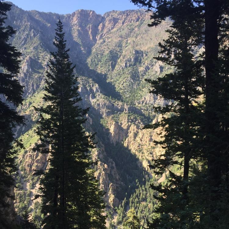 Provo Canyon Family Tradition