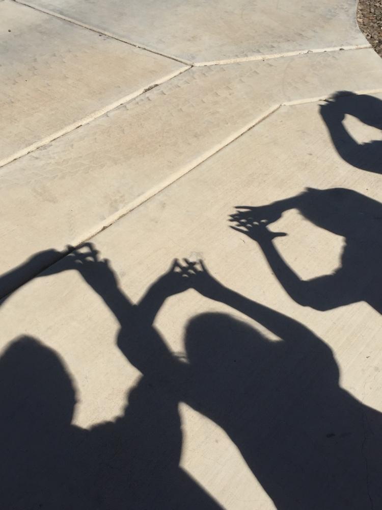 solar eclipse shadows